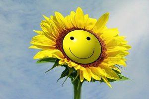 Sunflower Smilie Smile Joy  - kalhh / Pixabay